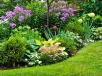 ¿Cuánto cuesta reformar un centro de jardinería?
