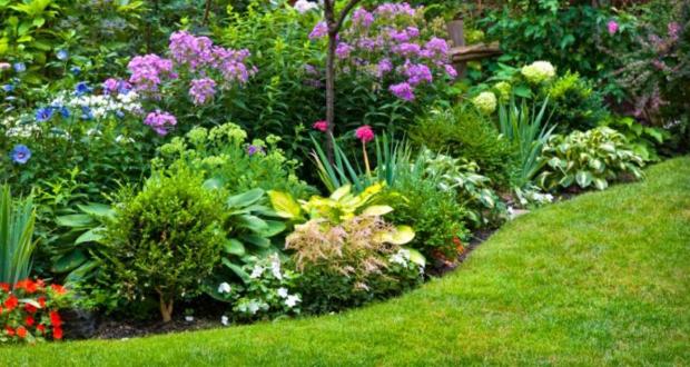 ¿Cuánto cuesta un centro de jardinería?
