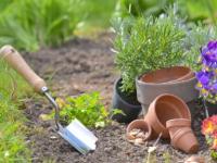 ¿Cuánto cuesta mantener un jardín?