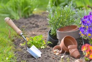 Cuánto cuesta cuidar y mantener un jardín